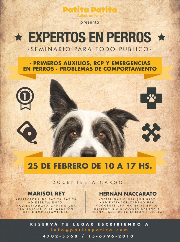 PAT_Seminario_ProblemasConducta_Flyer_Febrero