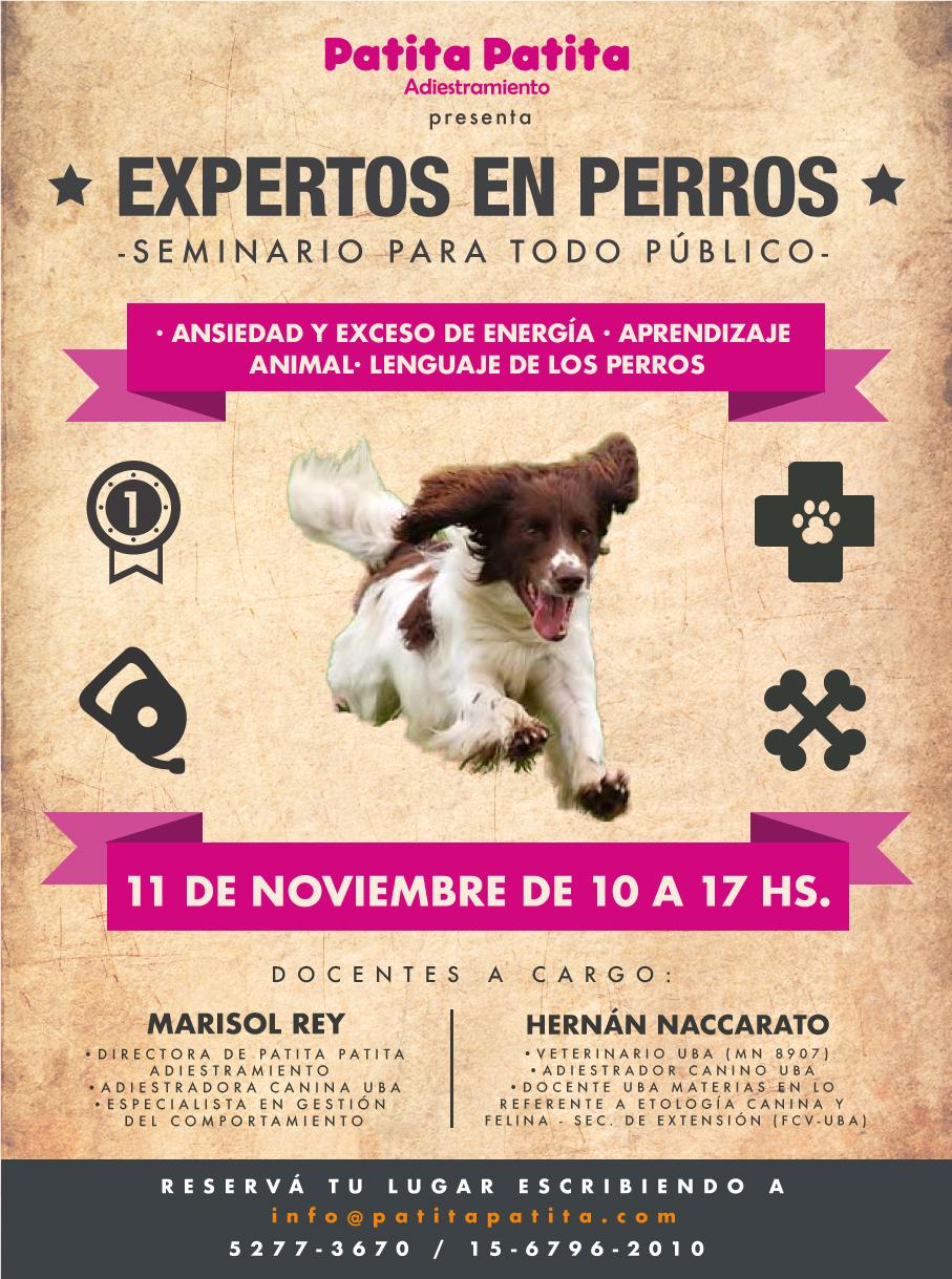 PAT_Seminario_Ansiedad_Flyer_Noviembre (1)