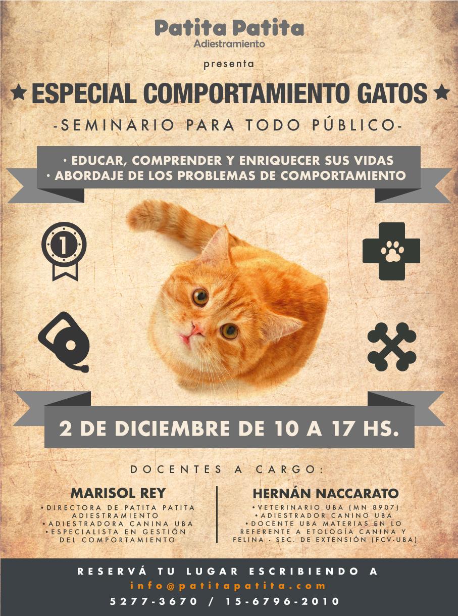 PAT_Seminario_Gatos_Flyer_Diciembre